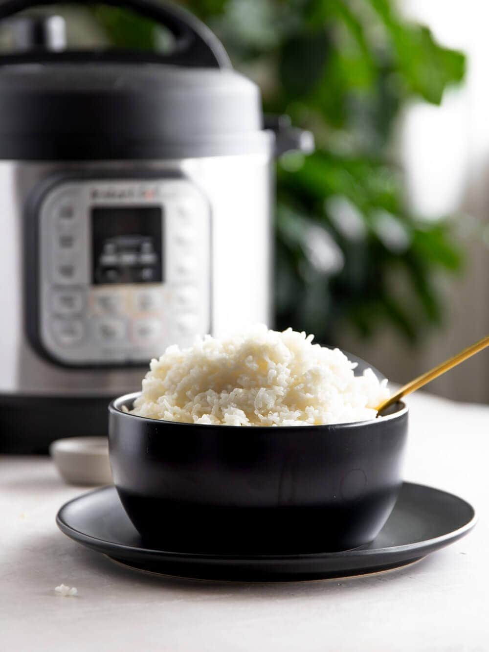 A bowl of basmati rice sitting in front of the instant pot.