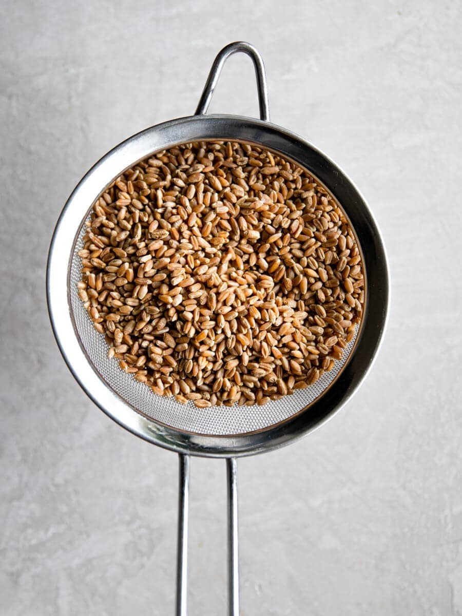 Wheat berries in a strainer.