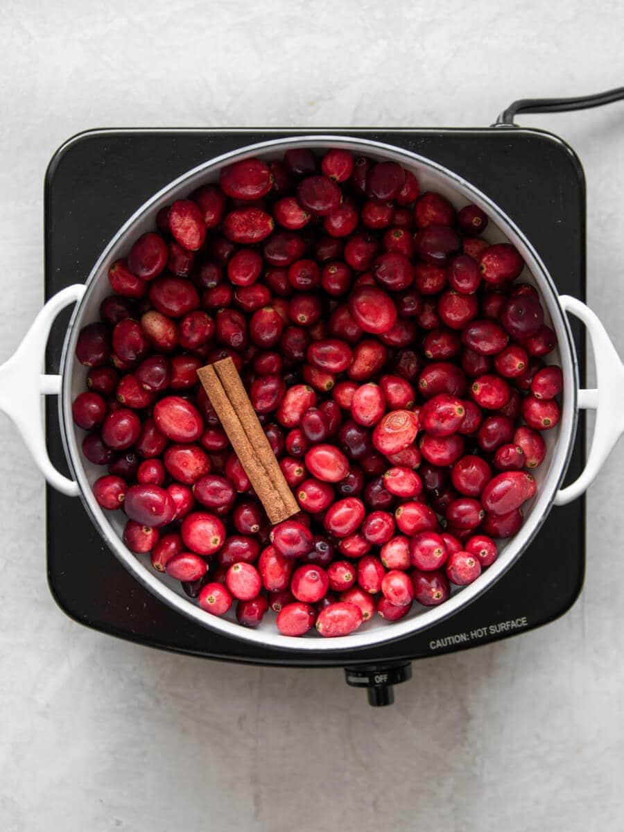 Pot with fresh cranberries and cinnamon stick